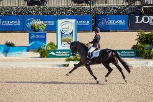 FEI World Equestrian Games™ Tryon Sophie WELLS riding C Fatal Attraction-GBR (Photo FEI Christophe Tanière)