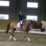 グレードⅣの常石勝義(明石乗馬協会)&ヴェズレイS
