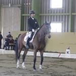 フリースタイルテストに出場したグレードⅢ稲葉 将(静岡乗馬クラブ/シンプレックス)&ビーマイボーイ