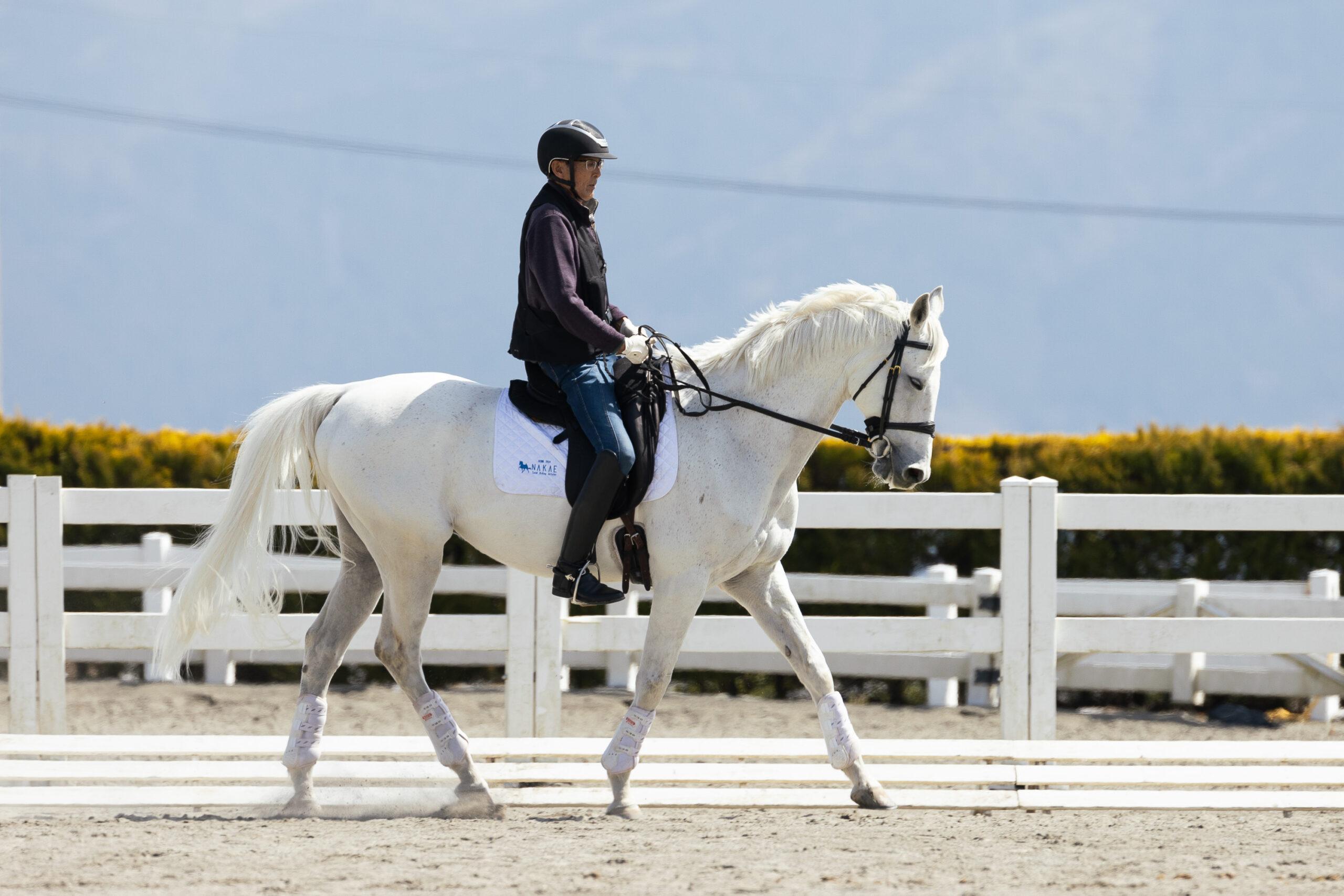 白馬に乗って合宿で練習する大川選手選手
